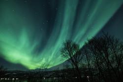 Aurora 13
