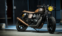 Alessandro Balsi_Bonneville's Matt Golden Queen