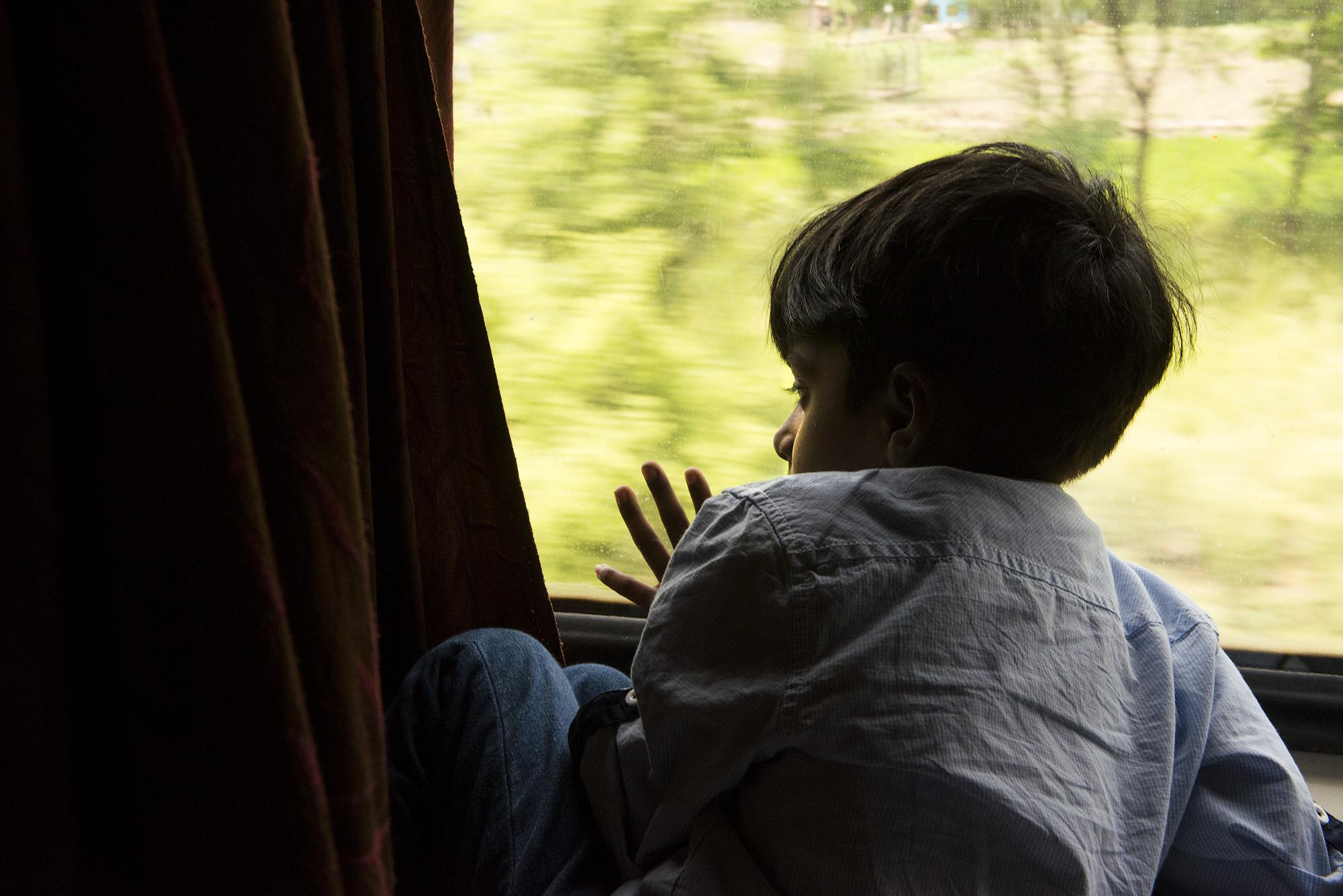 Dal treno