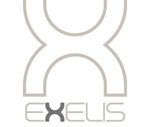 Exelis_finale.jpg