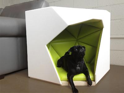 dog_house1