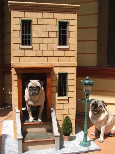 dog_house4