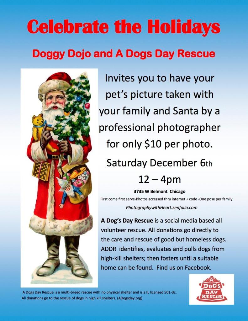 Santa - ADDR Doggy Dojo
