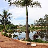ParqueOlavoFerreiradeSá.jpg