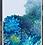 Thumbnail: Samsung Galaxy S20 Plus יבואן רשמי