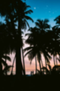 shifaaz-shamoon-1113383.jpg