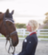 Web design and development for small business - equestrian