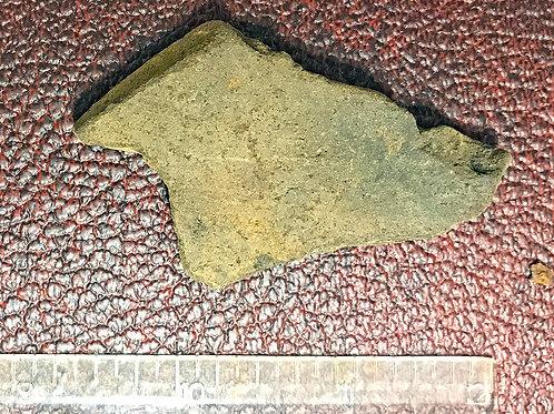 Mississippian Culture Pot Sherd 800-1200 AD