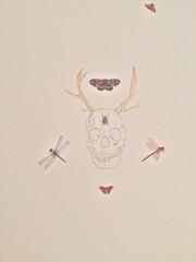 Skull moth antlers.jpg