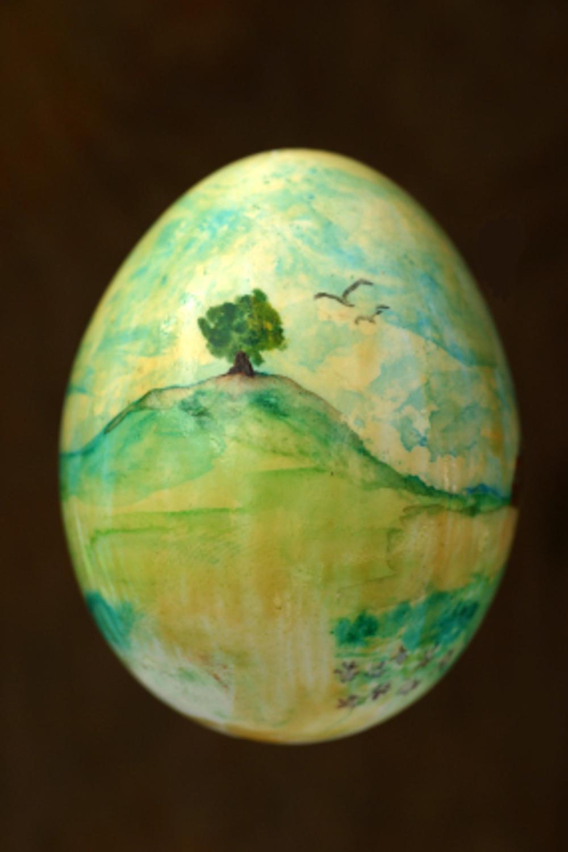 Eggs29