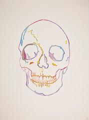 Skull Penny.jpg