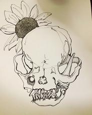 Botanical Mammal Skull Series