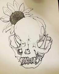 pug skull.JPG