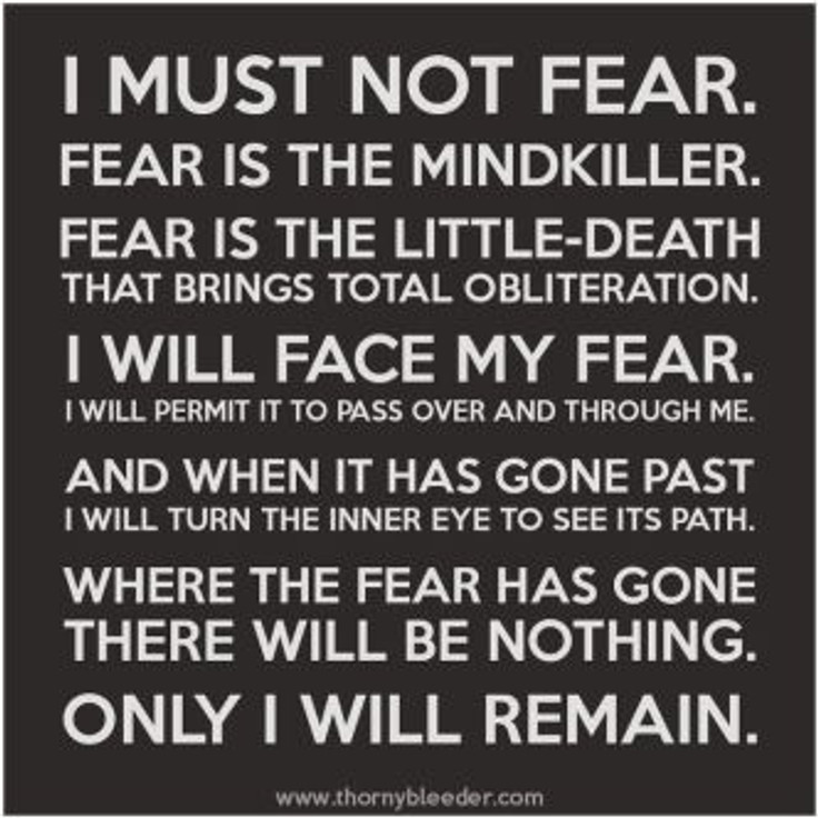 i will feel the fear