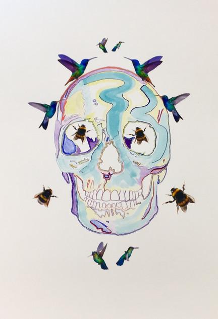 Nature Skull2.jpg