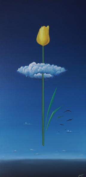 Head in the cloud (S hlavou v oblacích)5