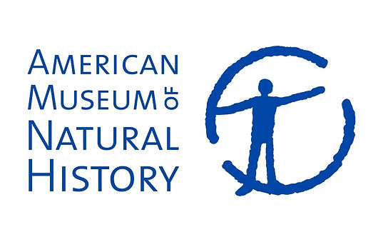 American Museum of Natural History.jpg