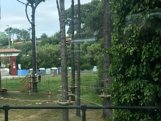 Campamento Sasamón - Día 5