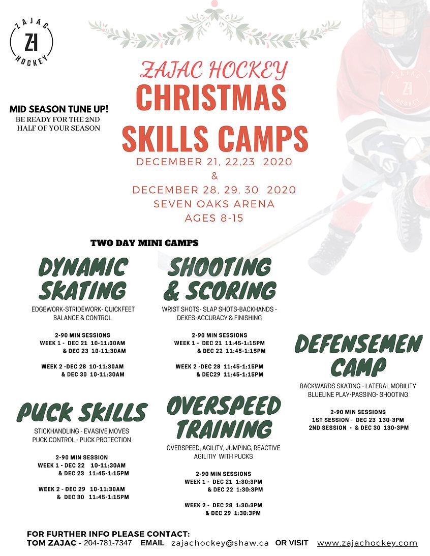 Zajac hockey christmas.jpg
