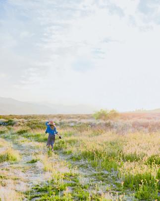 Bree in Wildflower Field-12.jpg