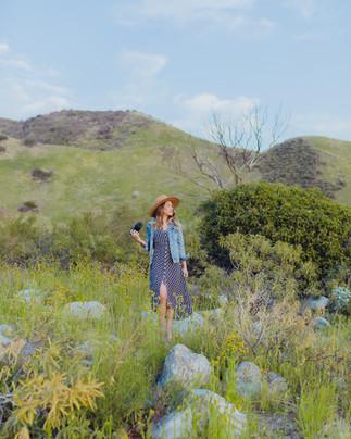 Bree in Wildflower Field-20.jpg