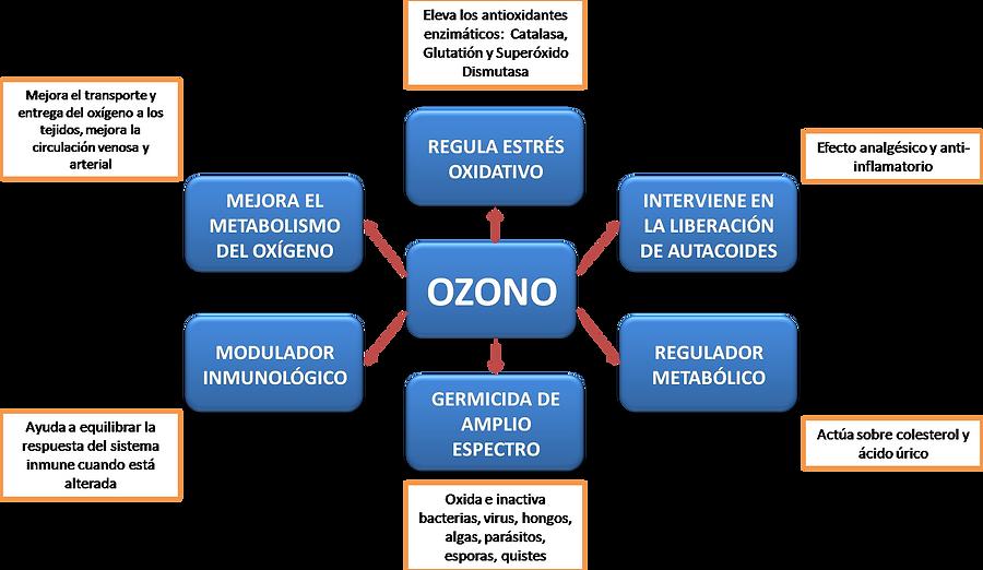 EFECTOS BIOQUÍMICOS DEL OZONO EN EL ORGANISMO