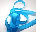 Blue Bias Binding