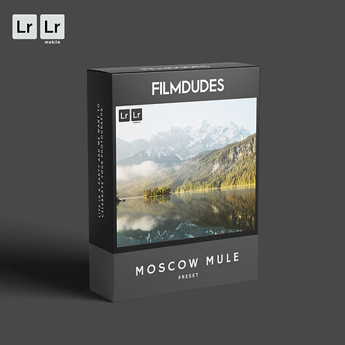 FILMDUDES Preset | MOSCOW MULE (Lightroom Desktop & Mobile)