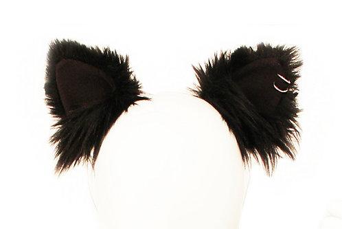Black Cat Pierced Ears