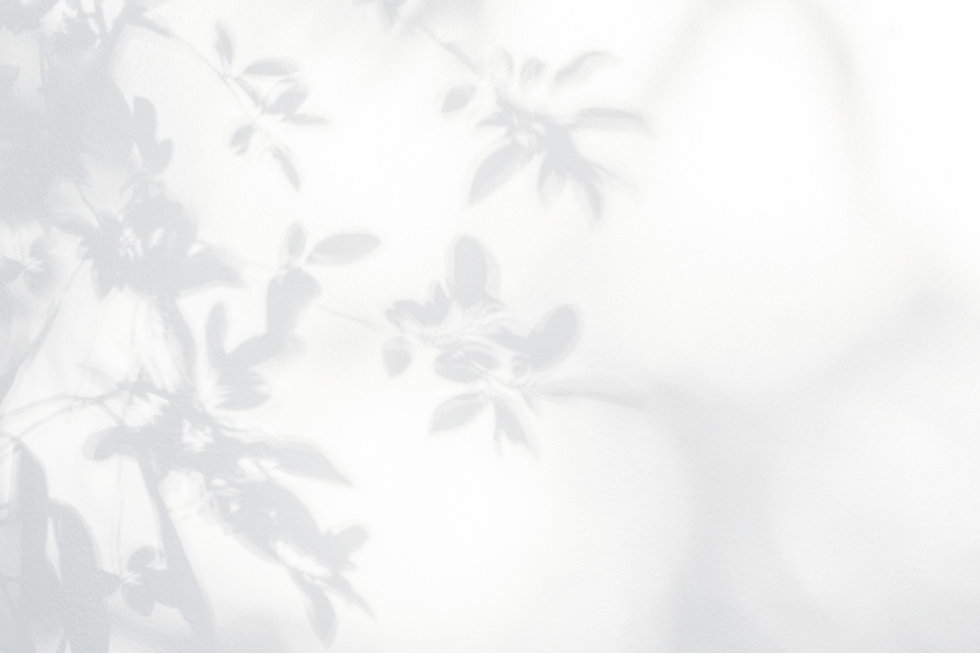Leaves Shadow _edited.jpg