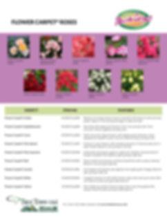 Flower Carpet Information Sheet_Page_2.j