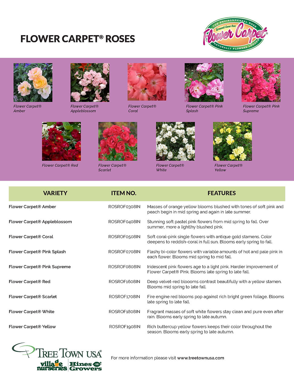 Flower Carpet Information Sheet_Page_2.j