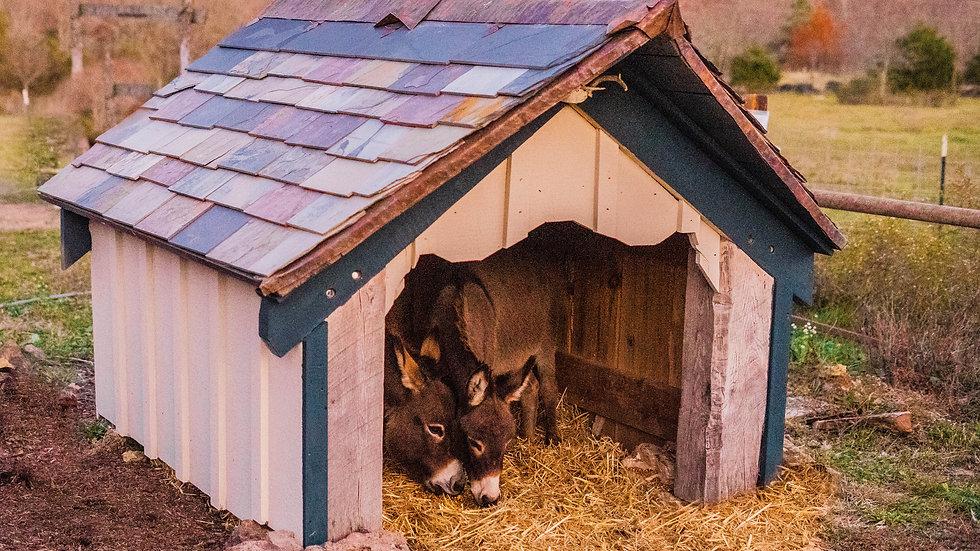 Ozark-Crafted Timber Framed Barn