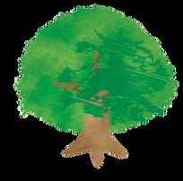 ふくろうの森保育園:シンボルツリーイラスト
