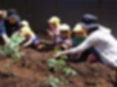 ふくろうの森保育園:保育イメージ
