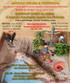Módulo de Sandplay (Caixa de Areia) A Jornada Terapêutica através dos Simbolos 13 e 27 Fev (5ª feira