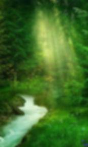 気に満たされた森。