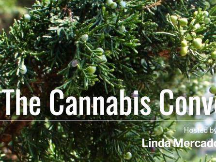 "DC Radio Interview - ""Cannabis Conversations"""