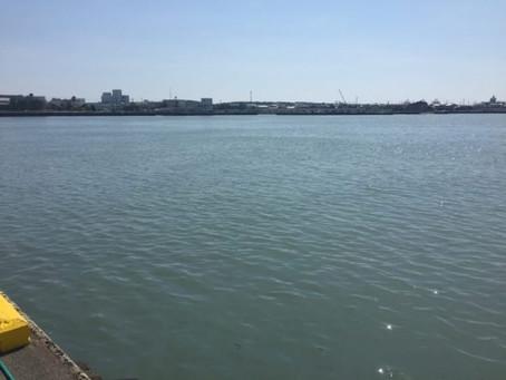 明日は大井川港トライアスロン大会です。