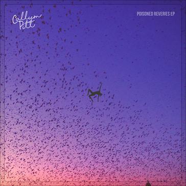 CALLUM PITT - Poisoned Reveries EP (KAL00005E)