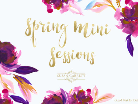 Spring Mini Sessions | For Children