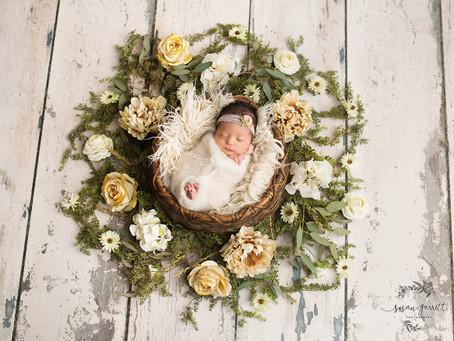 Ella Jeanine | Newborn