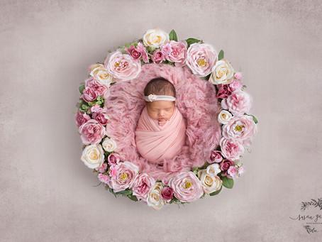 Karina | Newborn