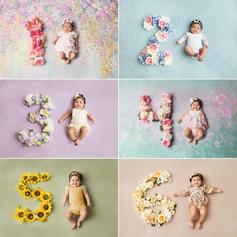 6 Month Collage.jpg