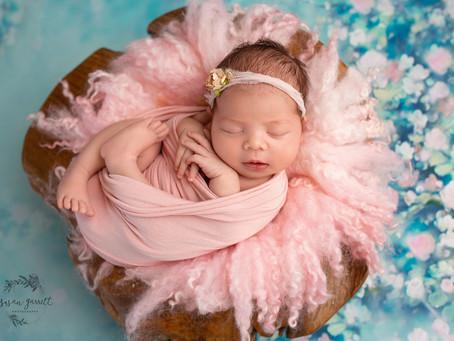 Selah | Newborn