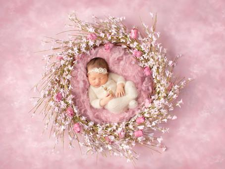 Alessia | Newborn