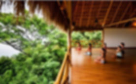 A few rooms still left in my Xinalani Me