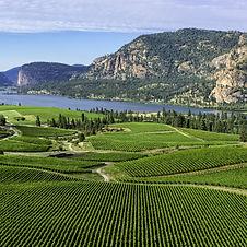 Wine Vineyards overlooking the beautiful Okagangan Lake. Plan my trip to Okanagan, British Columbia