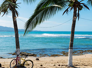 Palm trees sway in the breeze as the small waves come crashing up onto the beach. Plan my trip to Puerto Viejo Talamance in Cost Rica