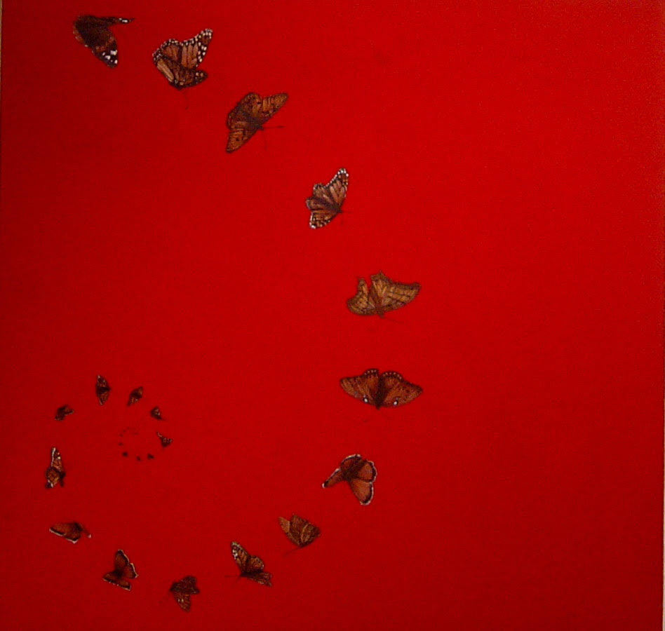 The butterfly effect Series (2010 -